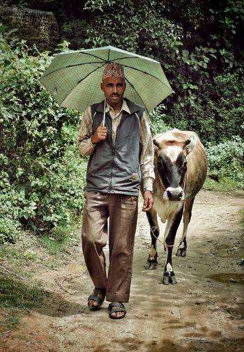 Portrait of man standing in rain