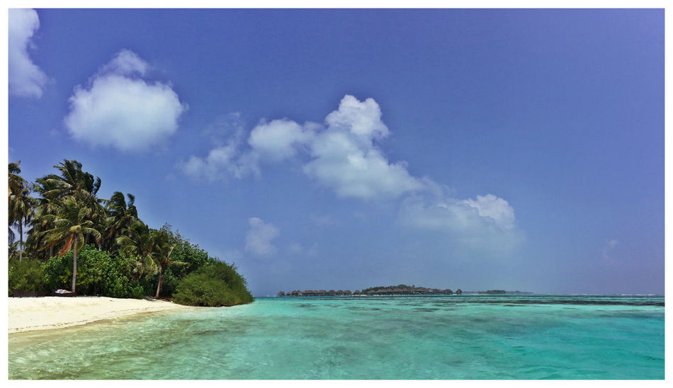 Maldives Panoramic Palm Trees Crystal Clear Waters Blue Sea Sunny And Windy Blue Water Blue Sky Bikini Beach Amazing View Amazing Place EyeEM Beach Photography Reef Life Is A Beach Landscapes With WhiteWall Done That.