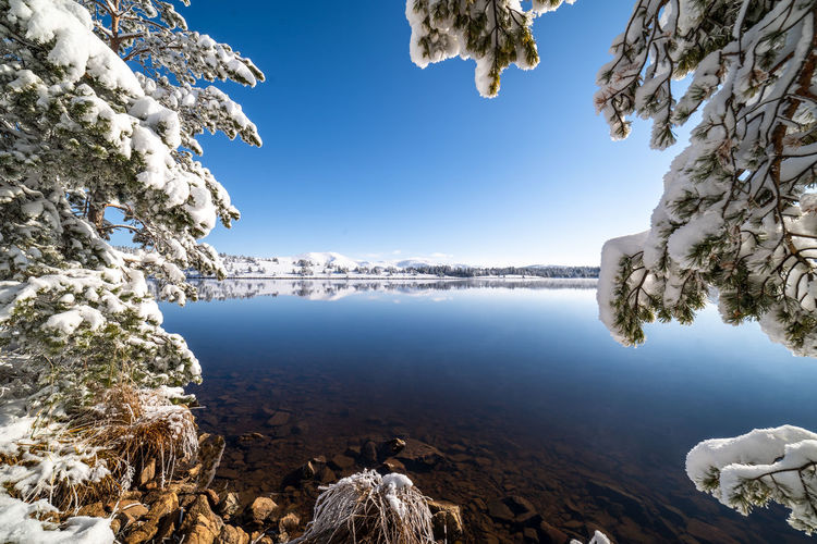 Fisherman Lake EyeEmNewHere Water Lake Blue Snow Mountain Beach Reflection Rock - Object Clear Sky Sky Lakeshore Pine Tree Reflection Lake Snow Covered Pine Wood