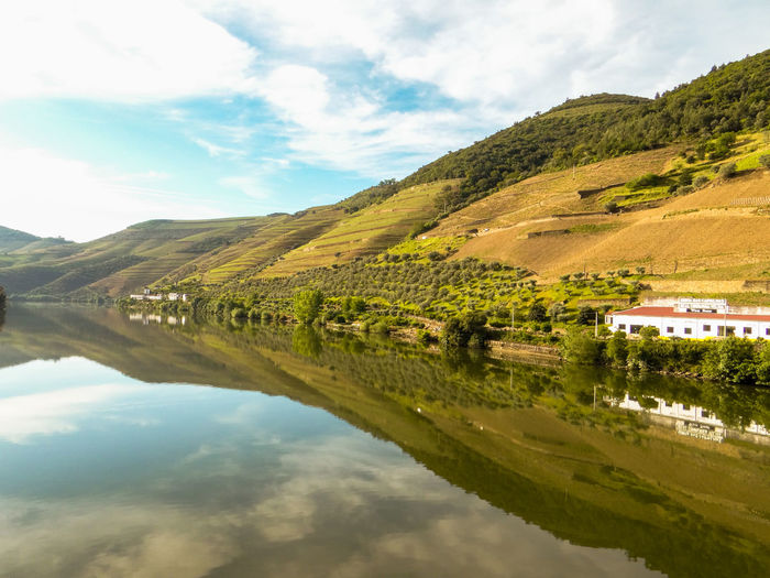Douro Valley Duoro River Hillsides Landscape Outdoors Porto Reflections In The Water Scenics Sky And Clouds Tranquil Waters Vineyards  Wineries