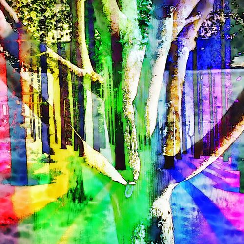 Multi Colored Outdoors No People Men Artist Kunsthaus_Lay Kunstritter Tree Beauty In Nature