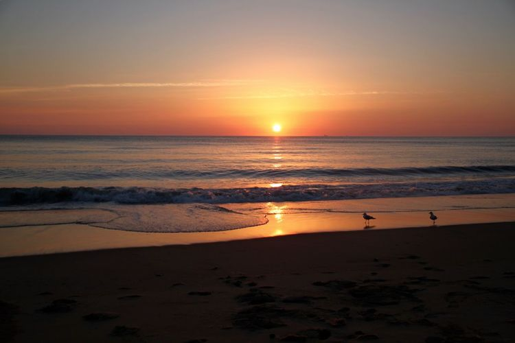 Morning Light Morning Sky USA Virginia Beach Backgrounds Beach Beauty In Nature Horizon Over Water Idyllic Nature No People Ocean Orange Color Scenics Sea Silhouette Sky Sun Sunrise_sunsets_aroundworld Sunset Tranquil Scene Travel Destinations Vacations Water Wave