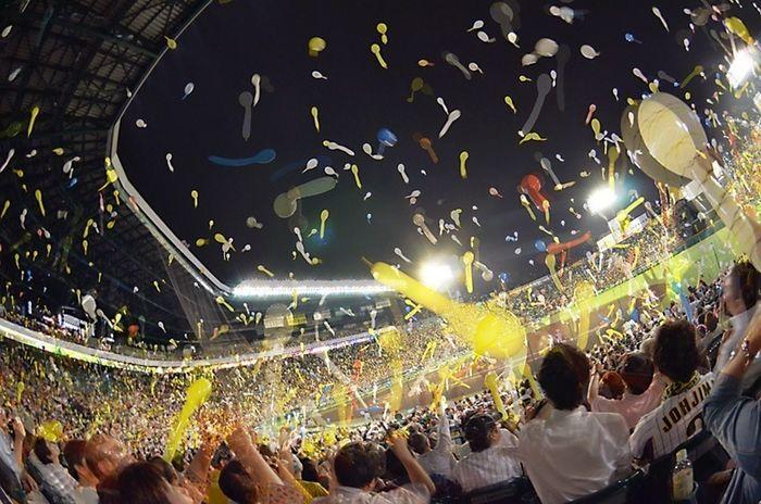 野球 阪神タイガース 甲子園 5/29 阪神vs楽天