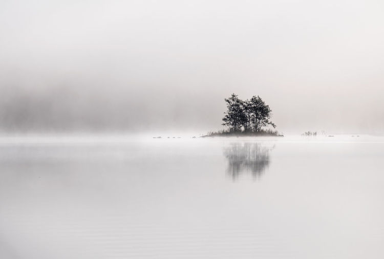 Peaceful and simple view from island at the lake in National Park, Finland. Autumn Finland National Park Tranquility Atmospheric Mood Beauty In Nature Fog Foggy Foggy Morning Island Lake Lake View Lakeshore Landscape Light And Shadow Mist Nature No People Scenics Simplicity Sky Tranquil Scene Tranquility Tree Water The Great Outdoors - 2018 EyeEm Awards