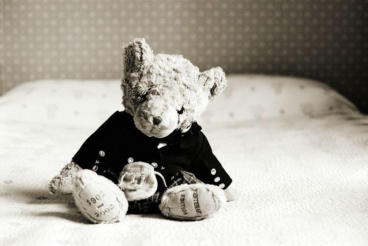orsetto Orso Pupazzo