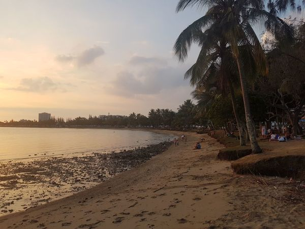Nature Horizon Over Water Noumea Coastline Idyllic Beauty In Nature Beach Sand Tree Water Sky Sunset Nature Tranquility Sea Outdoors Scenics No People Day
