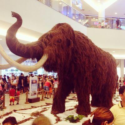Exposição Gigantes da Era do Gelo. Shopping Exposição Gigantes Eradogelo Manaus Amazonas Brasil World