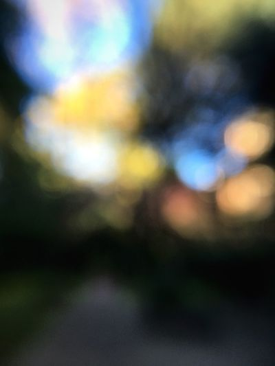 A little lens trick; please feel free to critique. Defocused Lighting Equipment Illuminated Blurred Multi Colored Outdoors Growth Tranquility Nature Tranquil Scene Sky Bright Lens Flare No People Colorful Scenics Beauty In Nature Non-urban Scene Autumn Colors