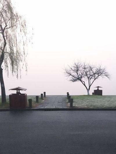 清晨踱步西子湖畔