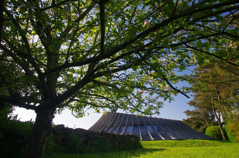 Architecture Brittany Grass Modern House Design Nature No People Tree