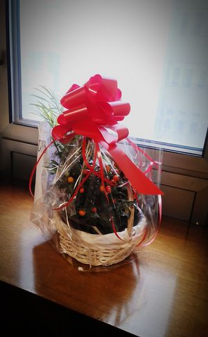 Present Presents Plants And Flowers Happy Birthday! Felicidades Plantas Regalo Flower Arrangement Flower Arrangements