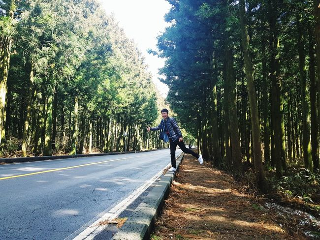 JEJU ISLAND  Saryeoni Forest Saryeoni Forest Path Hitchhiking