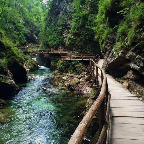 Protecting Where We Play Slovenia Vingtar Nature Enjoying The Sights Take A Break Walking IPhoneography
