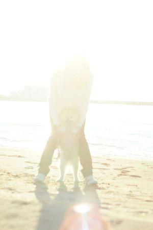 Mylovelydog Nofilter Seaside Oldlens WhiteCollection White Album EyeEm Dog Lover Pomeranian EyeEm Dogs