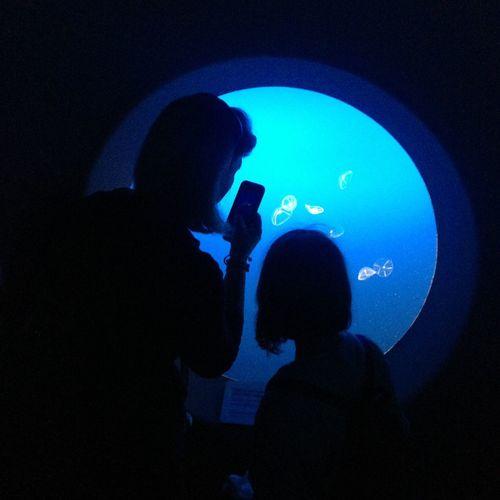 Jellyfish Ocean Blue Mother Daughter  Monterey