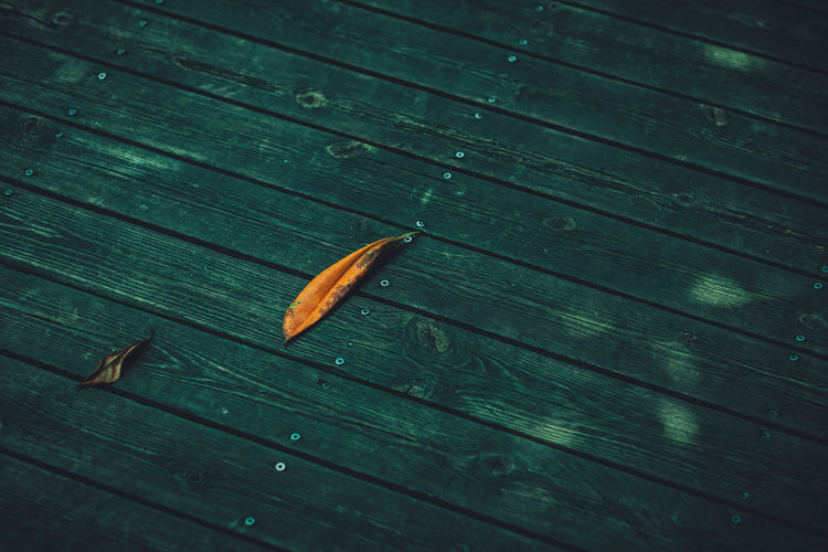 High angle view of dry leaves on wooden table