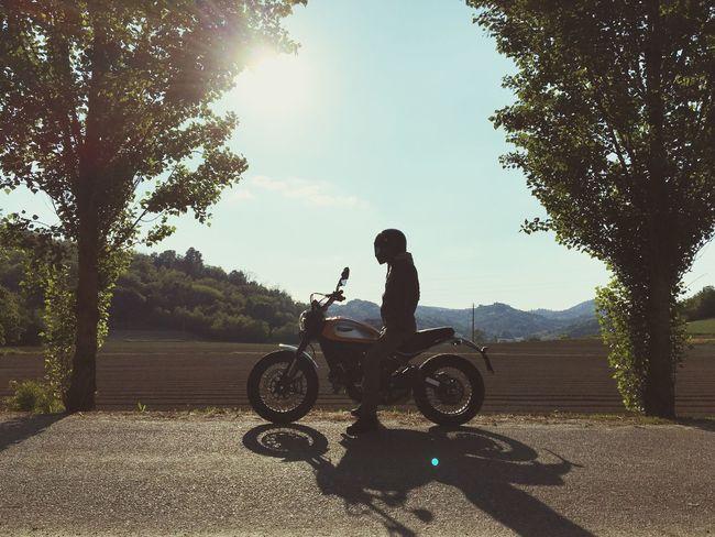 Ducati Scrambler Motorcycles Dreaming Summer Nature Engine
