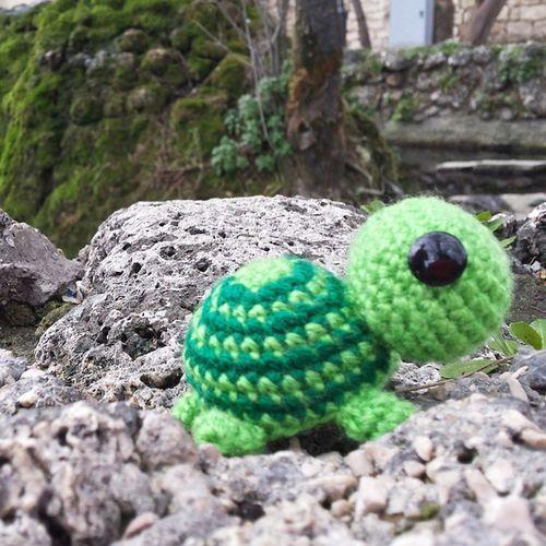 Tartaruga Amigurumi Turtle Crochet Uncinetto Acqua Verde Chiaro Scuro Acquario Lecreazionidigrazia Fb Seguitemi Followme