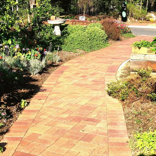 Clay Pavers Clay Paving Pavers Sunlight Plant Nature Day Park Grass No People Park - Man Made Space Shadow Outdoors Footpath Field Pattern