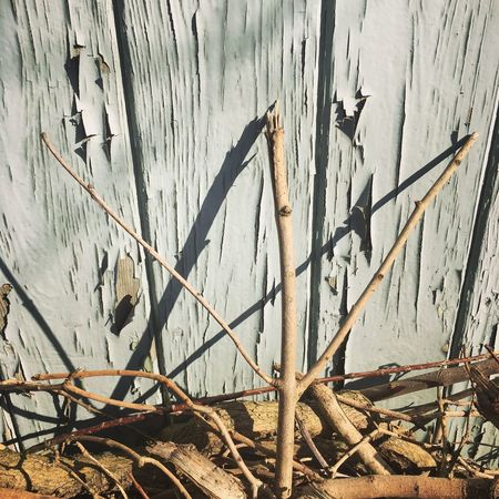 I'm stick man, I'm stick man! Stick Man Stick Men Literature Creative Play Photography Nature Environment Fun And Games