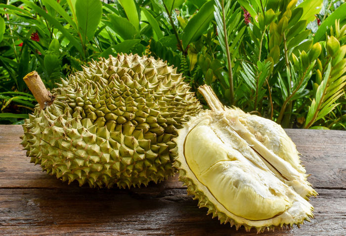 Ripe Durian special selected for durian lovers ready to eat condition,on wood background. Durian is known as King of fruits. It is smelly and the shell is covered with nails. King Pulp Raw Smelly Weird Delicious Durian Fruit Food And Drink Freshness Fruit Gourmet King Of Fruits Outdoors Peeled Ripe Fruit Season  Section Sections Sweet Tasty Tastyfood Thai Food Thorns Tropical Plants Yellow Gold