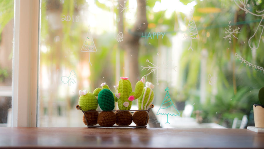 Art And Craft Business Close-up Creativity Day Focus On Foreground Green Color Hat Nature No People Outdoors Plant Potted Plant Representation Selective Focus Still Life Sunlight Table Text Window