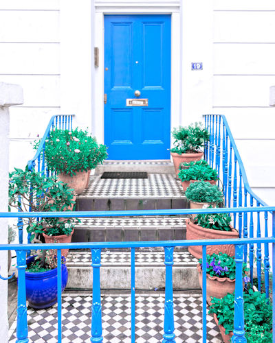 Blue door Blue Door Stairs_steps Stairs_collection Flower City Window Door Window Box Residential Building Blue Architecture Building Exterior Plant Entryway Doorway Closed Door Entrance Porch Gate Front Door Entry