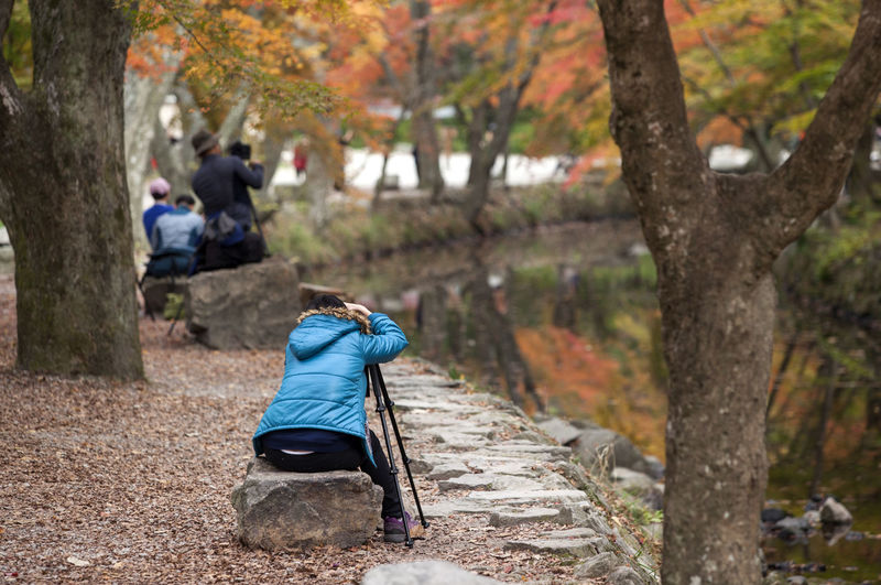 Rear view of woman sitting with tripod on rock by pond