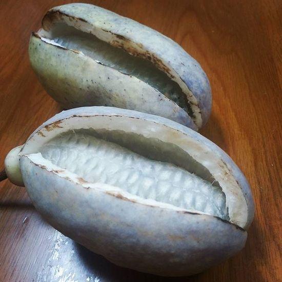 今年のあけびは大粒だ! あけび Akebia 大地の恵み 田舎暮らし freshfruit 秋の味覚