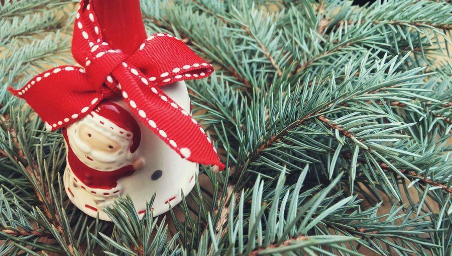 Close-up of decoration on christmas tree