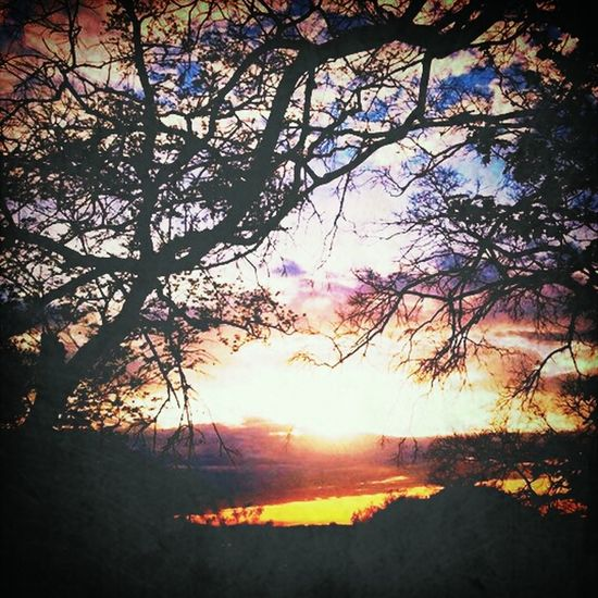 brooklyns sunset ~ Relaxing Sunset Nature Beautifulview