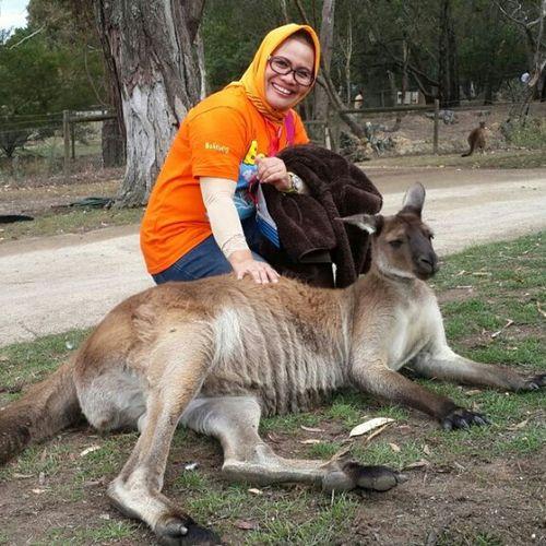 Hello...kangguru,