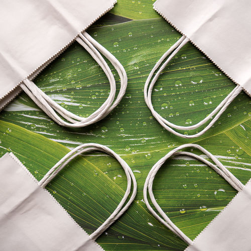 High angle view of paper bags on wet green leaves