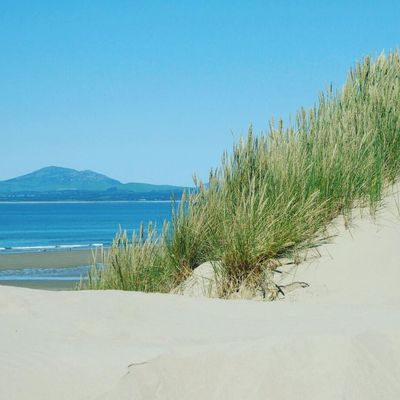 Harlech Beach North Wales Coast North Wales Beach Sand Sea Marram Grass Nature Horizon Over Water Clear Sky Sand Dune Tranquil Scene Scenics Day Grass Blue Water Outdoors Beauty In Nature Tranquility Vacations Sky No People