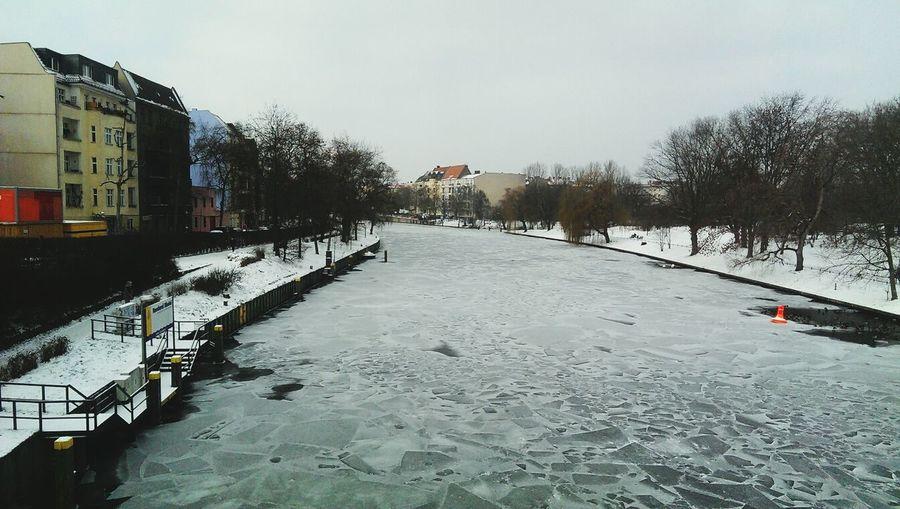 -12... Frío cachuo. Winter