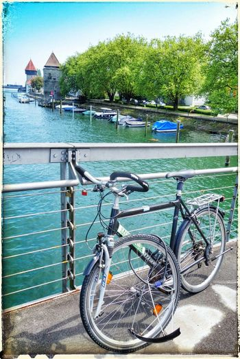 What's Wrong? Destroyed Hello World Konstanz OpenEdit Popular Photos Streetphotography Riverside Bridge Bycicle
