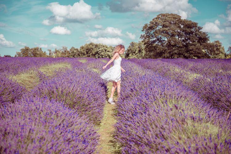 Woman Walking Amidst Flowering Lavenders