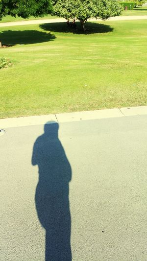 Shadows In