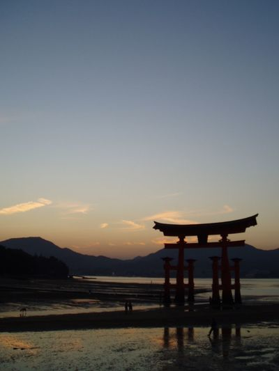 Japan Tori Torii Gate Japanese Culture Japanese  Sunset Silhouette Shrine