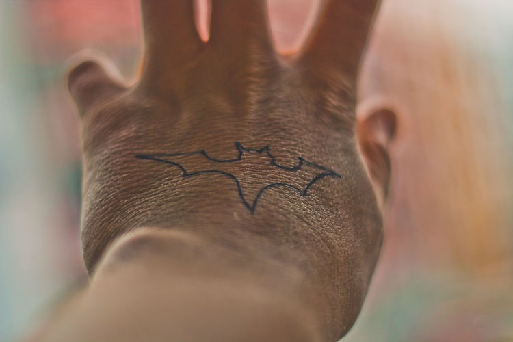 Human Body Part Close-up Hand Body Part Human Hand One Person Tattoo Focus On Foreground Indoors  Selective Focus Adult Young Adult Day Mammal Human Limb Unrecognizable Person Prime Lens Canon 70d Sharp EyeEm Colorful! EyeEm Best Shots Badman Animal
