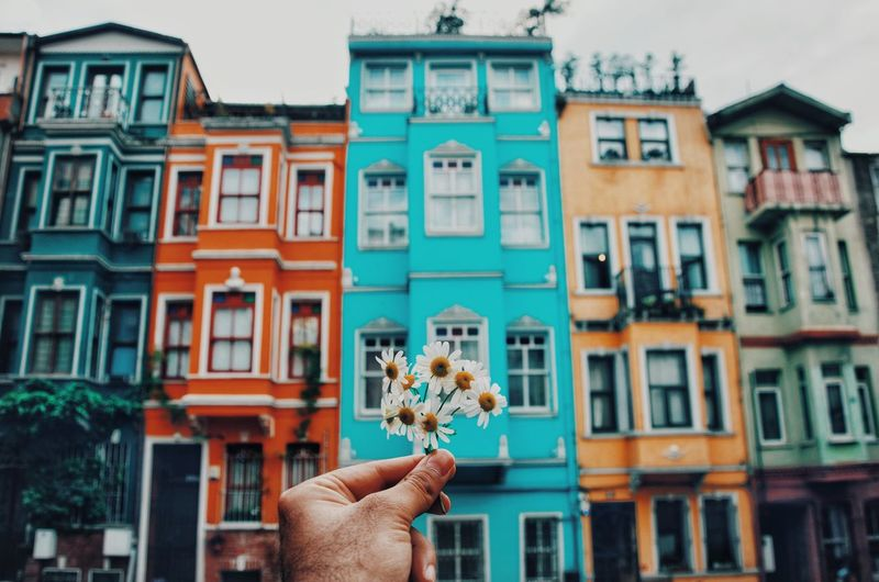 Cropped hand of person holding flowers against building in city