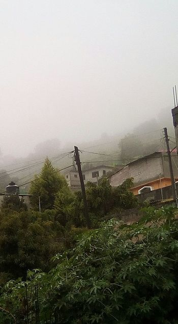Neblina Colina Beauty In Nature Day Frio ⛄❄