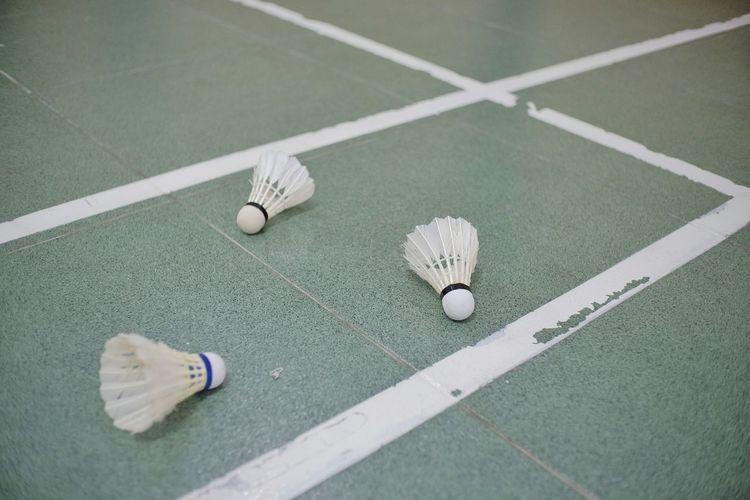 Shuttlecocks are scattered on the badminton court