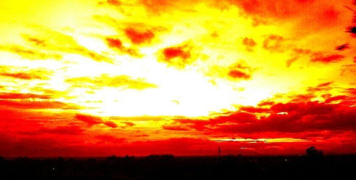 Sunset Enjoying The Sun