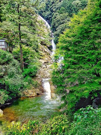 Beauty In Nature From My Point Of View Mountains And Valleys Morning Light Waterfalllovers Water Waterfall Flowing Stream Motion Blur Waterfall #water #landscape #nature #beautiful Japan Photography InKaratsu