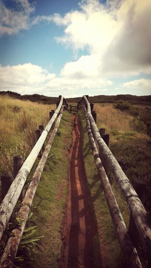 Showcase July Myphotooftheday Low Angle View EyeEm Best Shots Outdoor Photography Terceira Eye4photography  EyeEm Nature Lover Vulcanic Landscape Nature Photography Way Forward Pathway Walking Around Azores Hiking On The Way