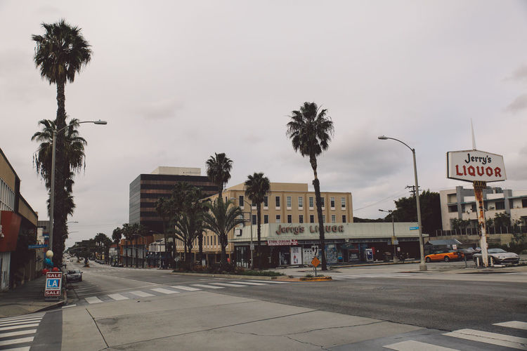 Architecture California City Los Angeles, California Tourist Attraction  Architecture Building Exterior Built Structure Car City Day Incidental People La Outdoors Palm Tree People Road Sky Street Tourist Destination Transportation Travel Destinations Tree