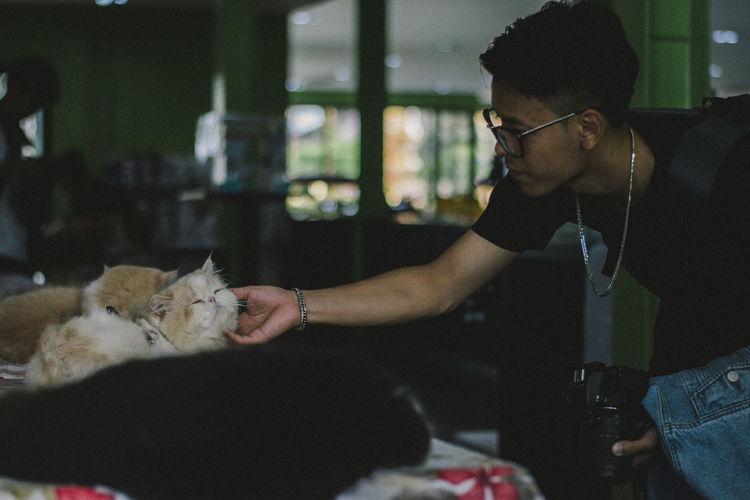 Young man touching cat