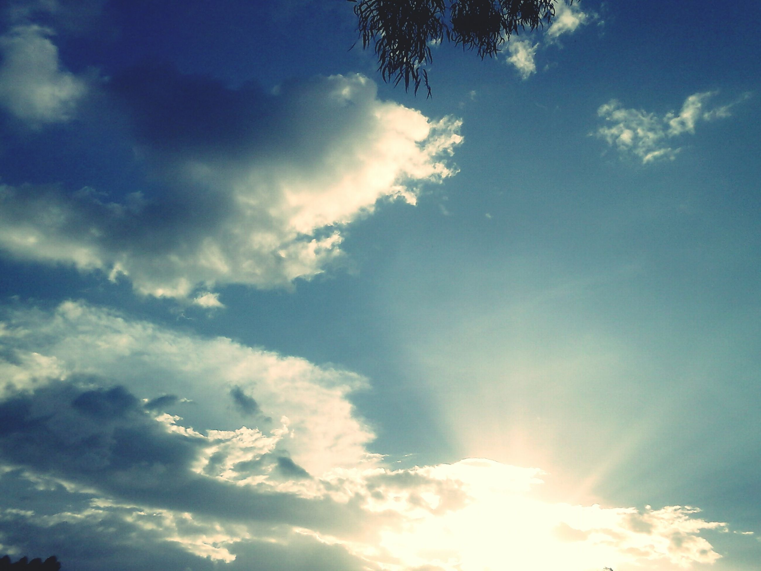 low angle view, sky, cloud - sky, beauty in nature, tranquility, scenics, blue, nature, tranquil scene, sunbeam, sunlight, sun, cloud, sky only, cloudy, idyllic, cloudscape, outdoors, no people, day
