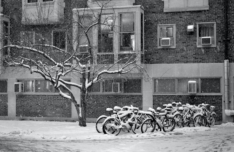 Bicycles on street against buildings in city during winter